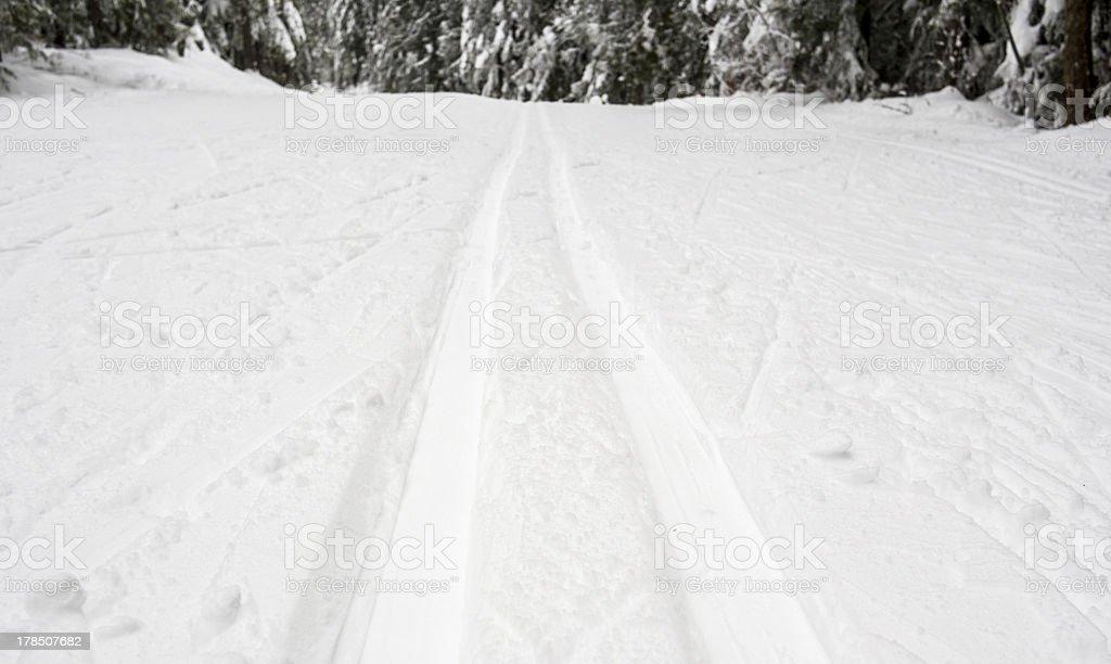 Cross country ski track royalty-free stock photo