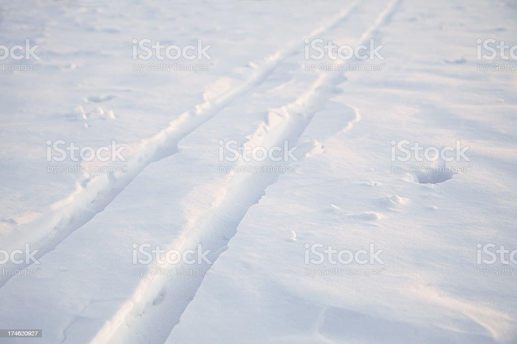 Cross Country Ski Tracks stock photo