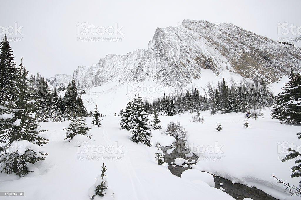 Cross Country Ski Trail royalty-free stock photo