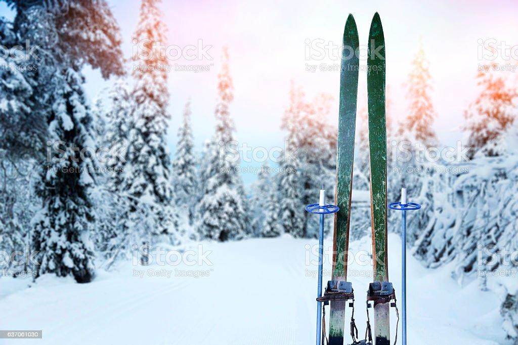 cross country ski trail with retro wood skis and ski poles stock photo