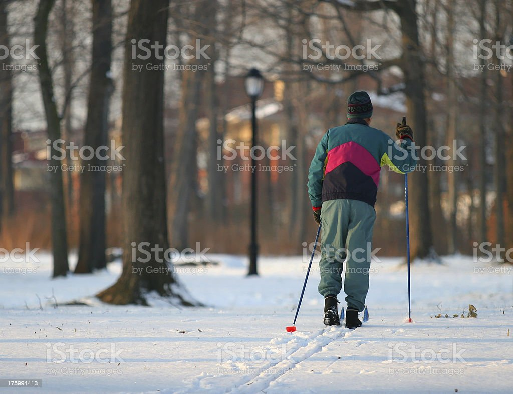 Cross Country skier in the woods stock photo