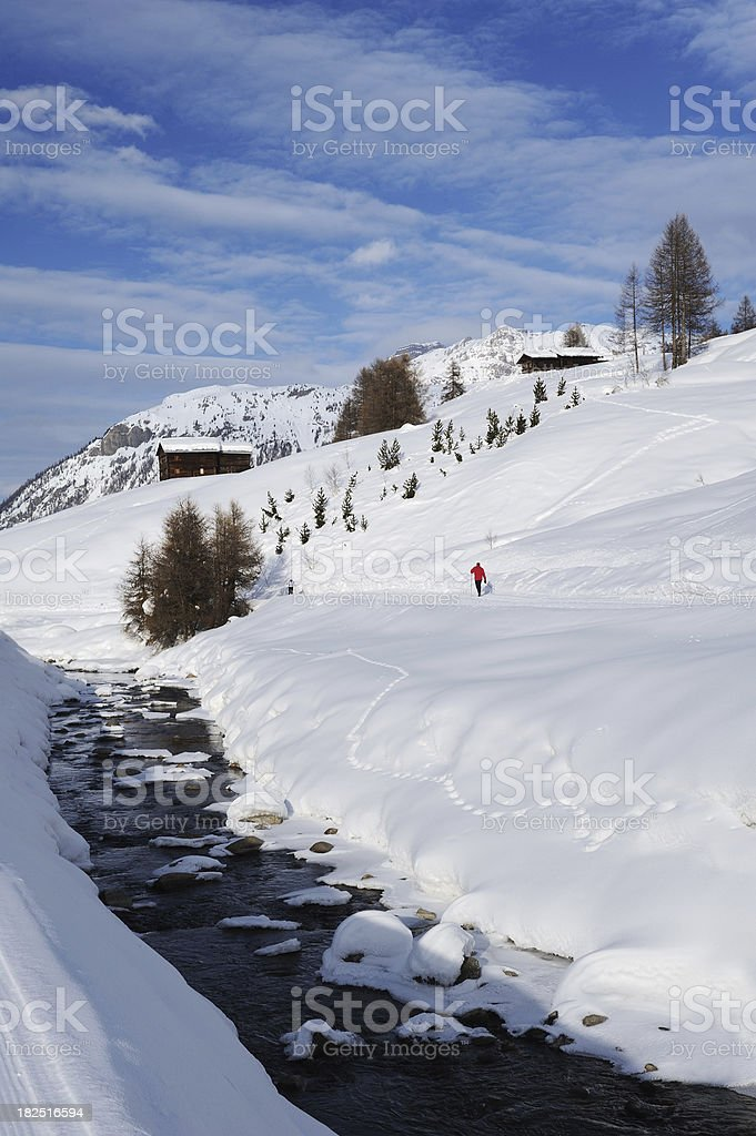 \'Rear view of cross country skier skiing in beautiful winter...