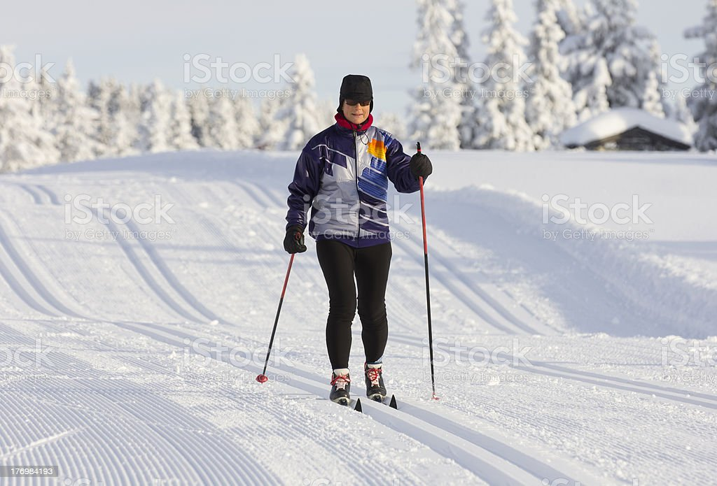 Cross country skier on winter morning royalty-free stock photo