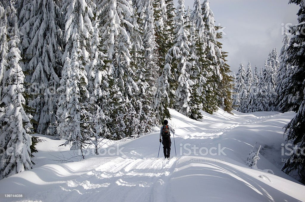 Cross country skier stock photo