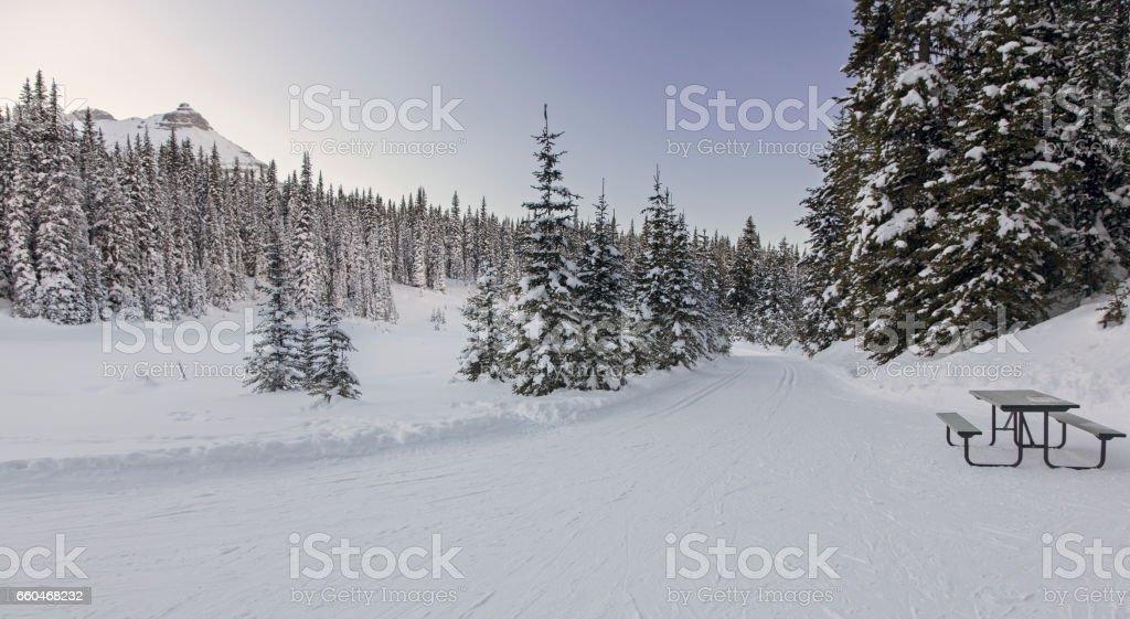 Cross Country Skiing Elk Pass Kananaskis Rocky Mountains stock photo