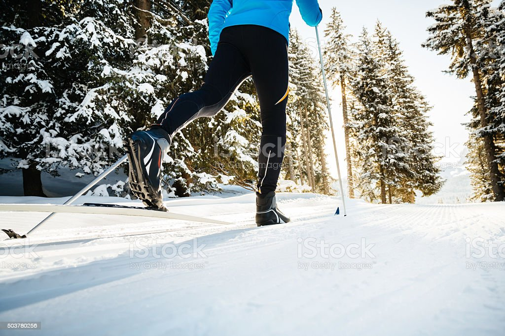 Cross Country Skiing In Forrest stock photo