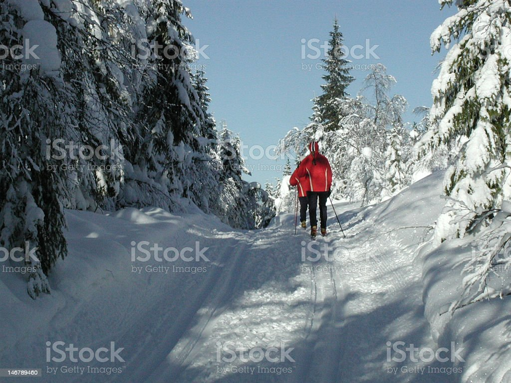 Cross country skiing in Norway stock photo