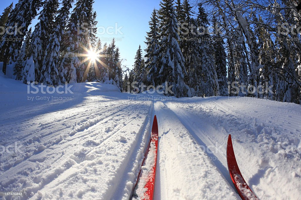 Cross country skiing in Oslo, Norway stock photo