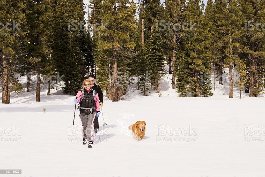 Skilanglauf#2 Lizenzfreies stock-foto