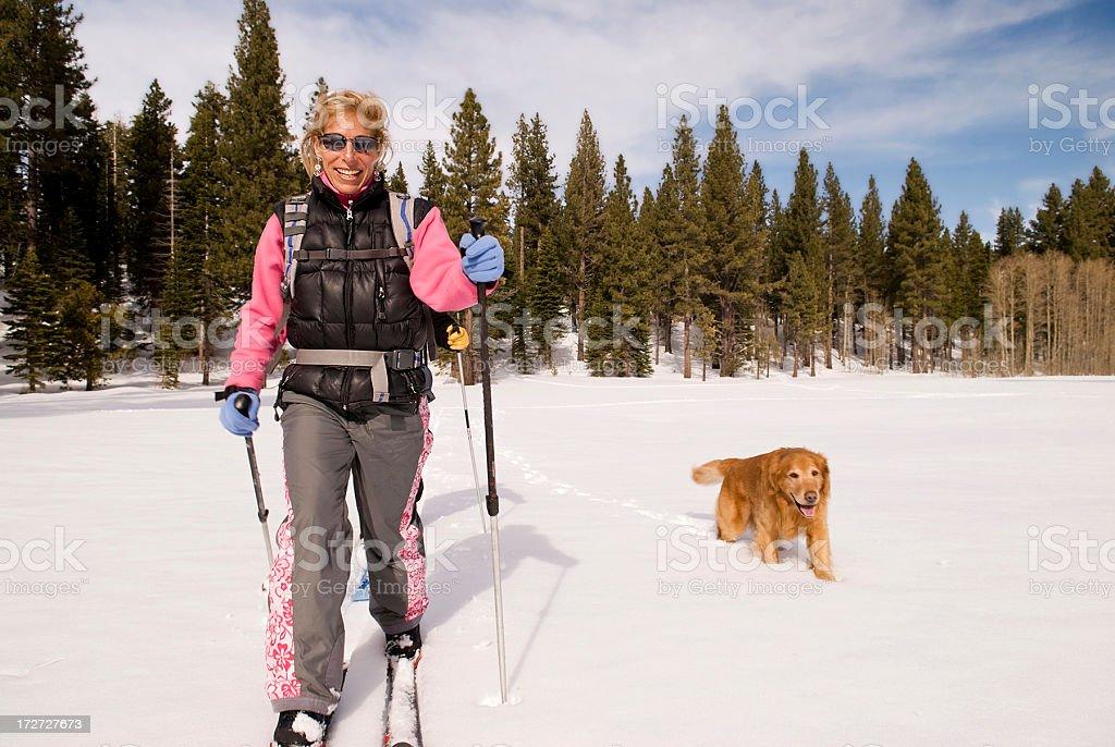 Cross Country Ski Lizenzfreies stock-foto