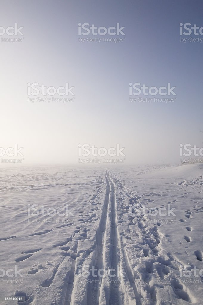 Cross country skiing tracks disappearing into the fog royalty-free stock photo