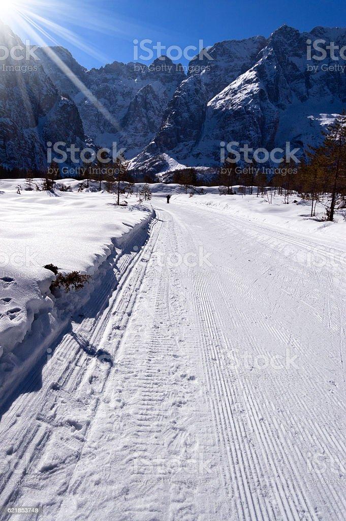 Cross Country Skiing Trail - Val Saisera Italy stock photo