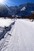 Cross Country Skiing Trail - Val Saisera Italy