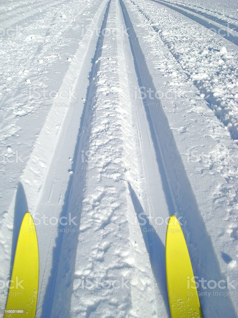 cross country skis royalty-free stock photo