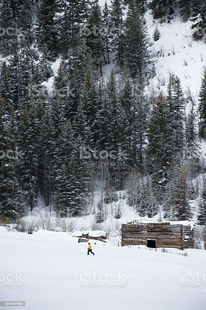 Cross Country Telemark Skier Ski Touring in the Mountains royalty-free stock photo