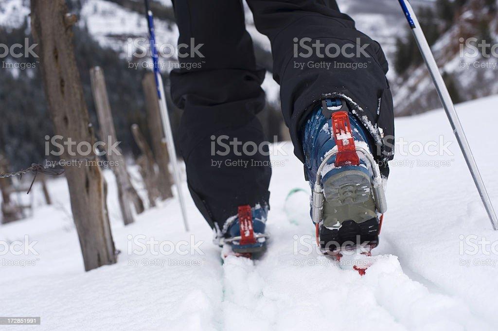 Cross Country Telemark Skier Ski Touring in the Mountains stock photo