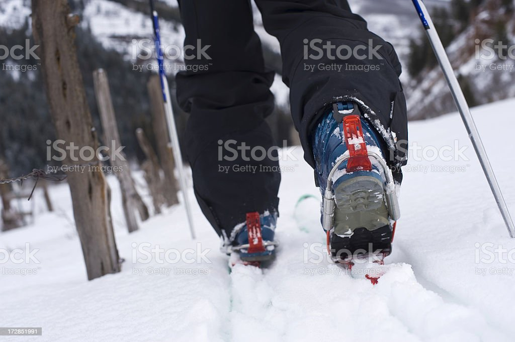 Cross Country Telemark Skier Ski Touring in the Mountains stock photo