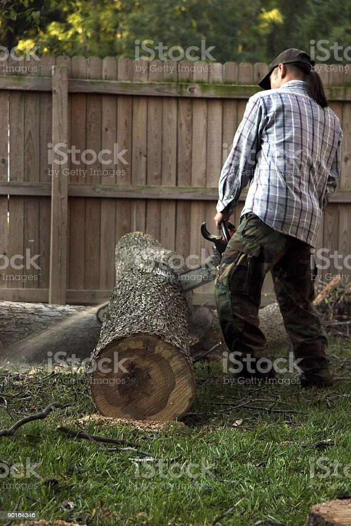 cross cutter (tree removal series) stock photo