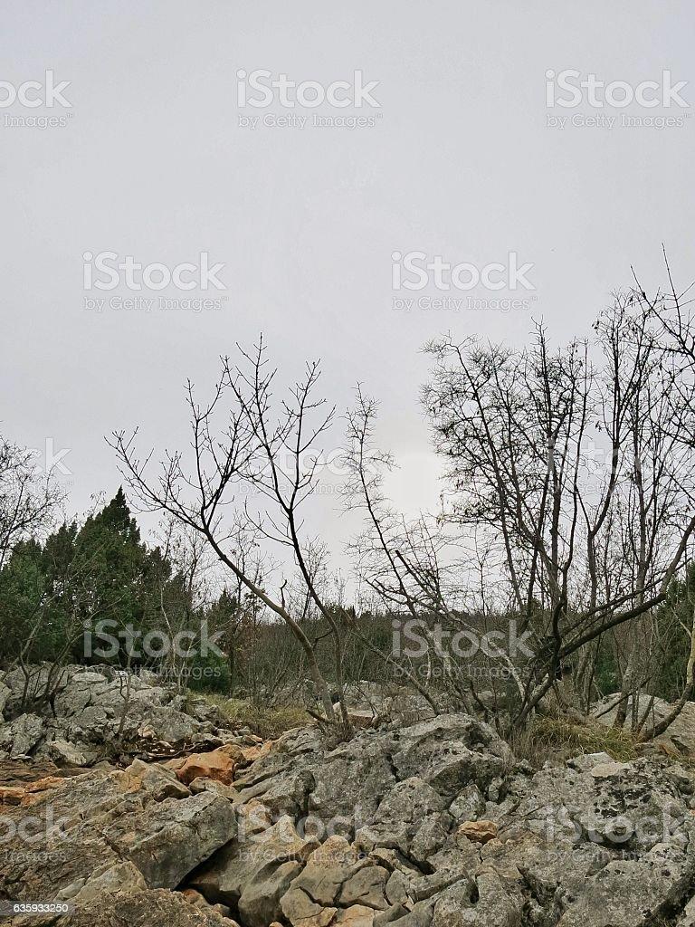 Cross Mountain, Mount Krizevac, Overcast Sky, Trees Sun, Medjugorje stock photo