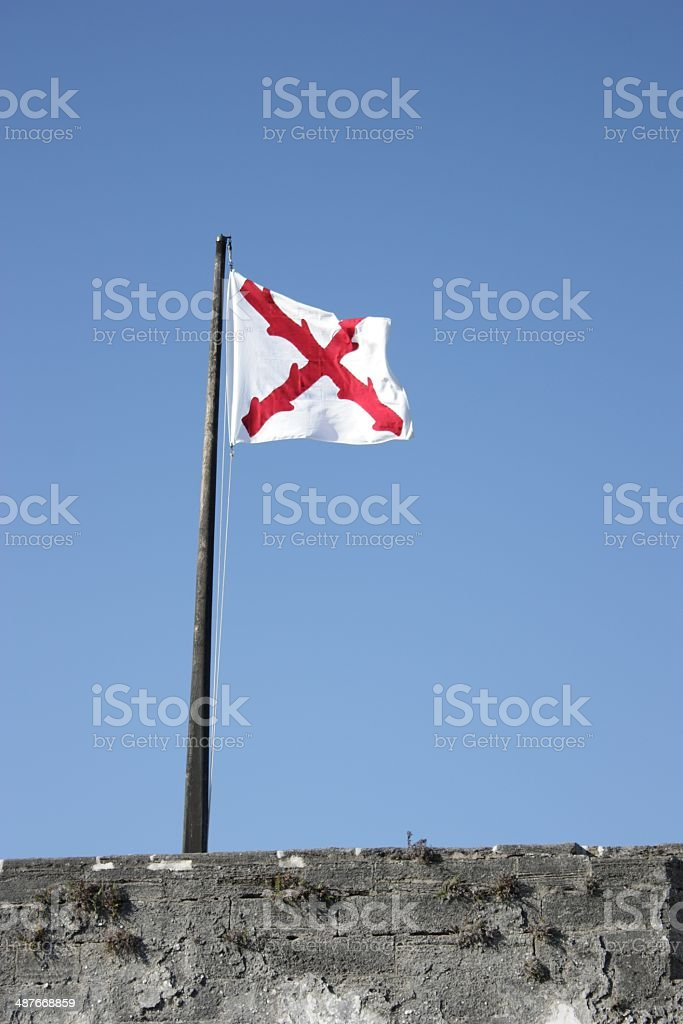 Cross of Burgundy flag - vertical royalty-free stock photo