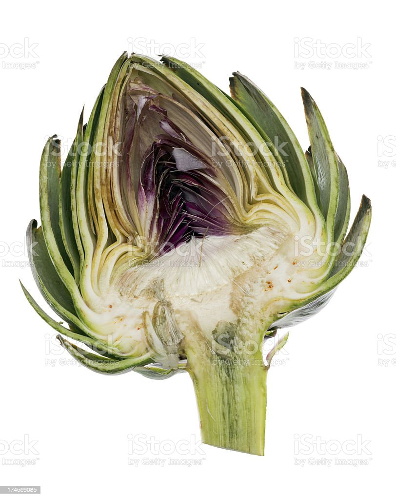 Cross section of artichoke isolated over a pure white background stock photo