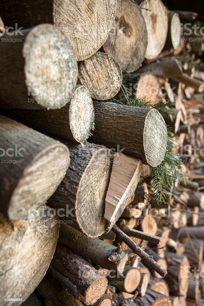 Cross section side of firewoods stock photo