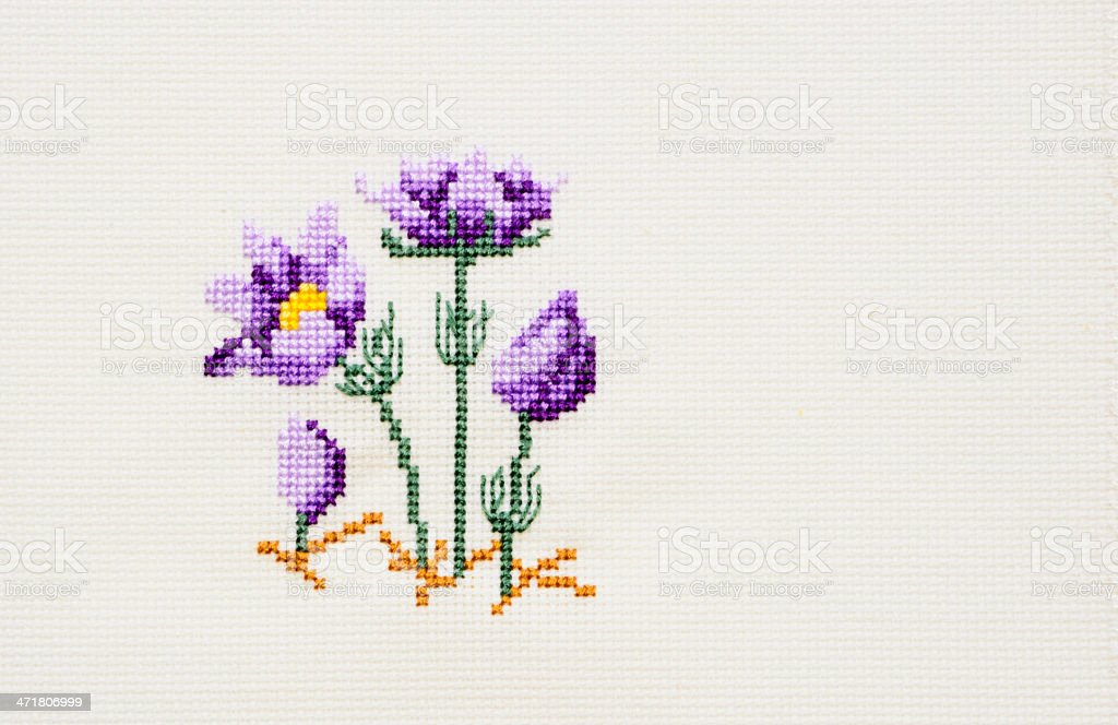 Cross Stitch Pasque Flowers royalty-free stock photo