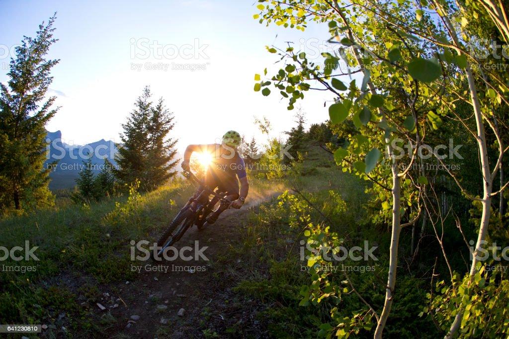 Cross-Country Mountain Bike Rider stock photo