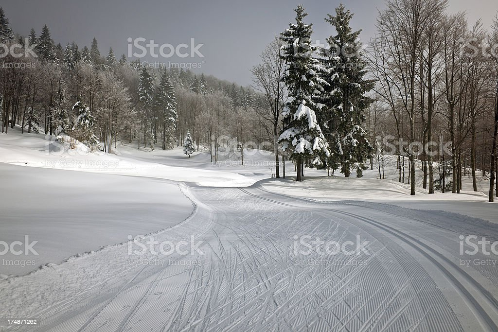 Cross-Country Ski Trace in Snow Winter Slovenia stock photo