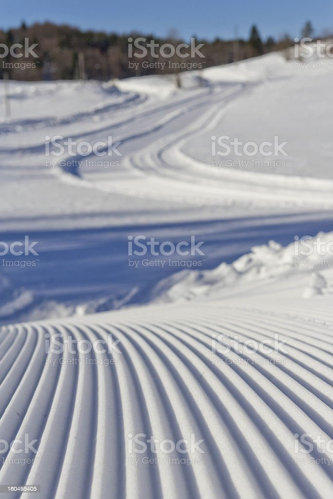 Cross-country ski track II stock photo