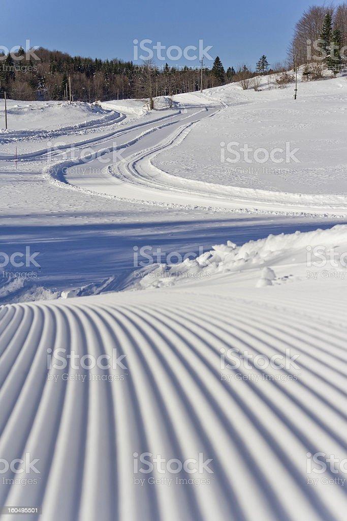 Cross-country ski track III stock photo