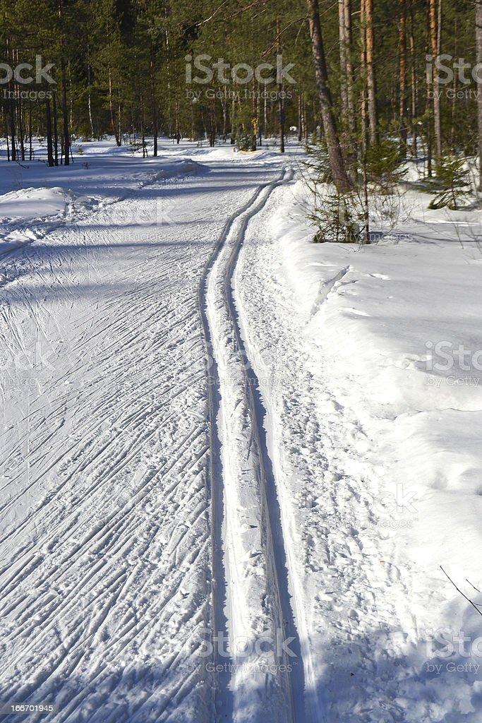 Cross-country ski track royalty-free stock photo