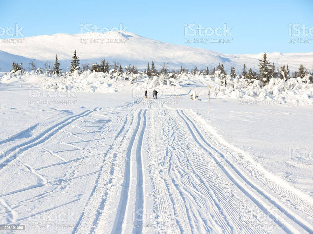 Cross-country ski tracks in the mountains, Synnfjell Norway stock photo