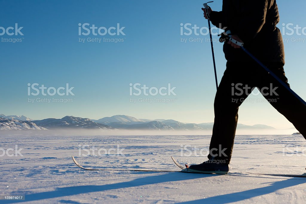 Cross-Country Skier in Tracks royalty-free stock photo