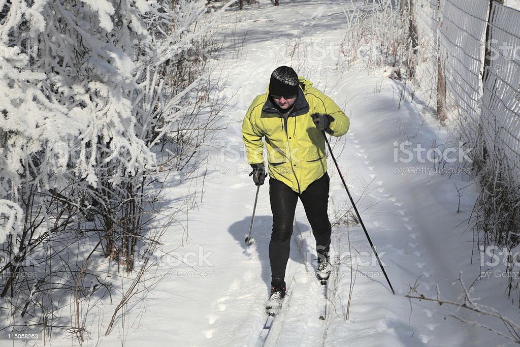 Cross-country Skier royalty-free stock photo