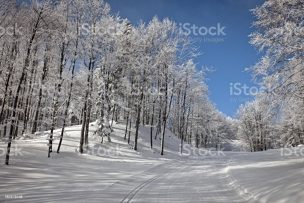 Cross-Country Skier Trace in Snow Winter Slovenia stock photo