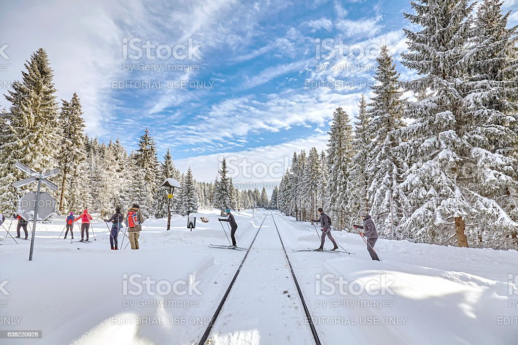 Cross-country skiers passing railroad track in forest. stock photo
