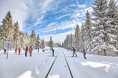 Cross-country skiers passing railroad track in forest.