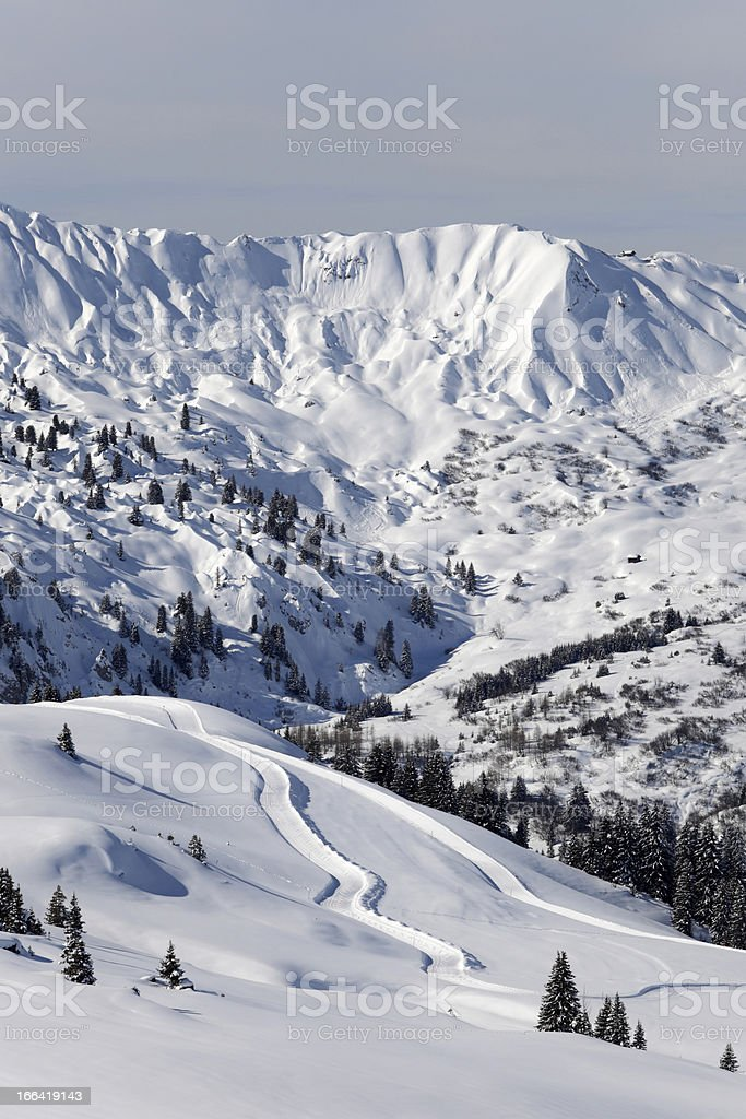 cross-country skiing area in the Swiss Alps royalty-free stock photo