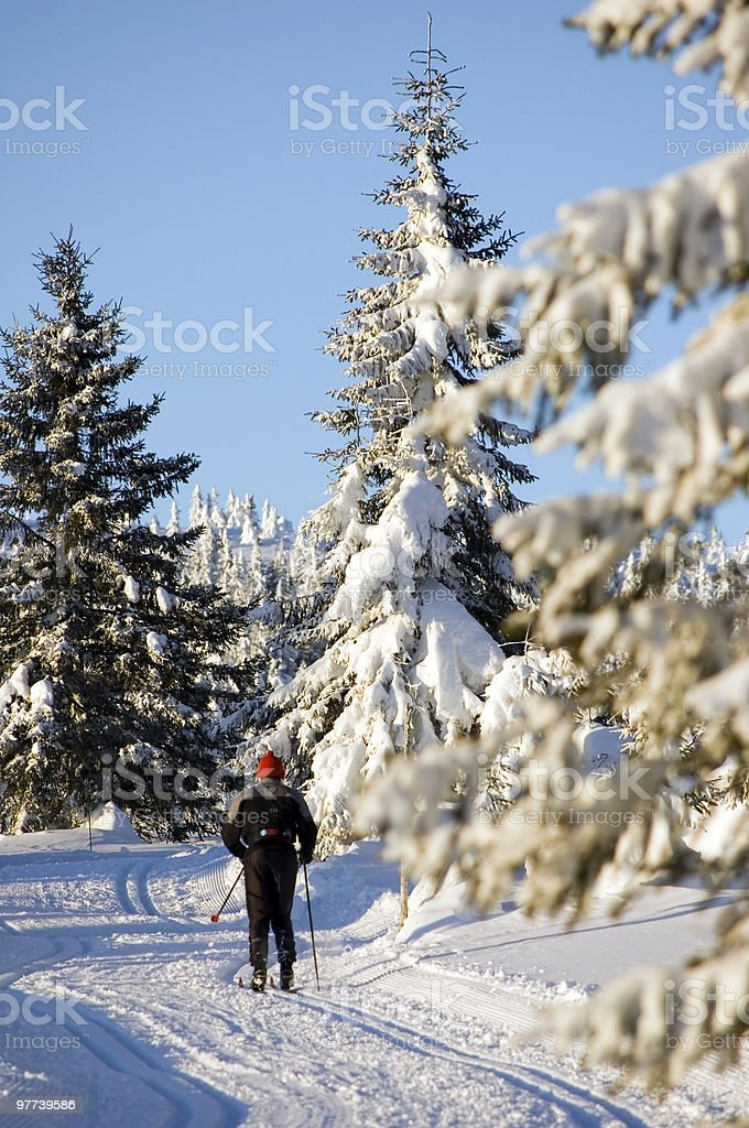 Cross-country skiing in Norway stock photo