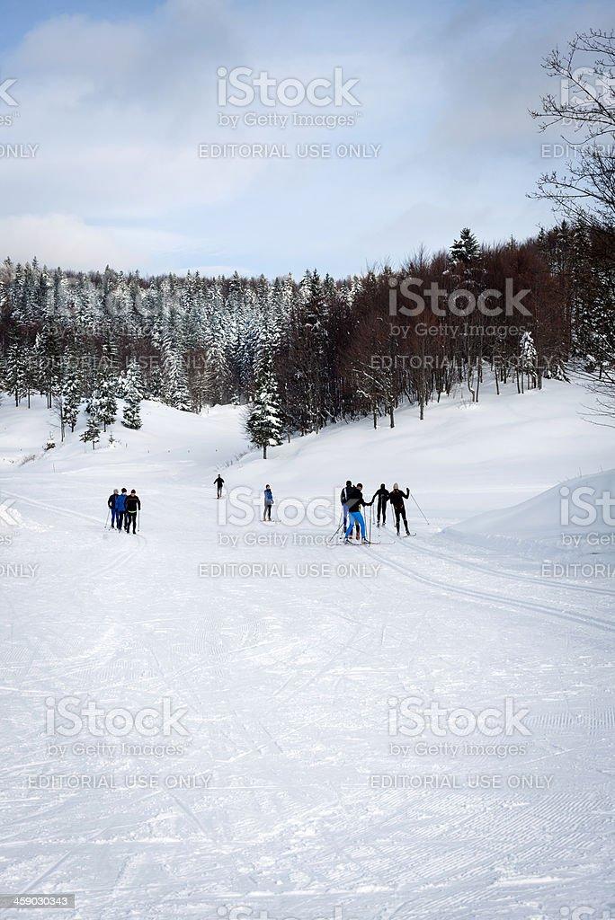 Cross-Country Skiing in Vojsko Slovenia Europe stock photo