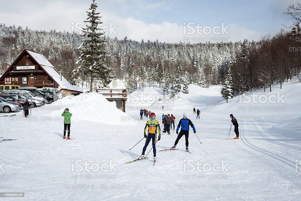 Cross-Country Skiing in Vojsko Slovenia stock photo