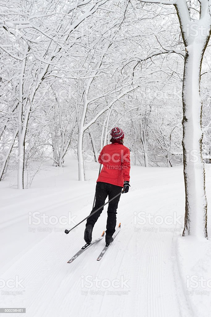 Cross-country skiing during a beautiful snow fall.