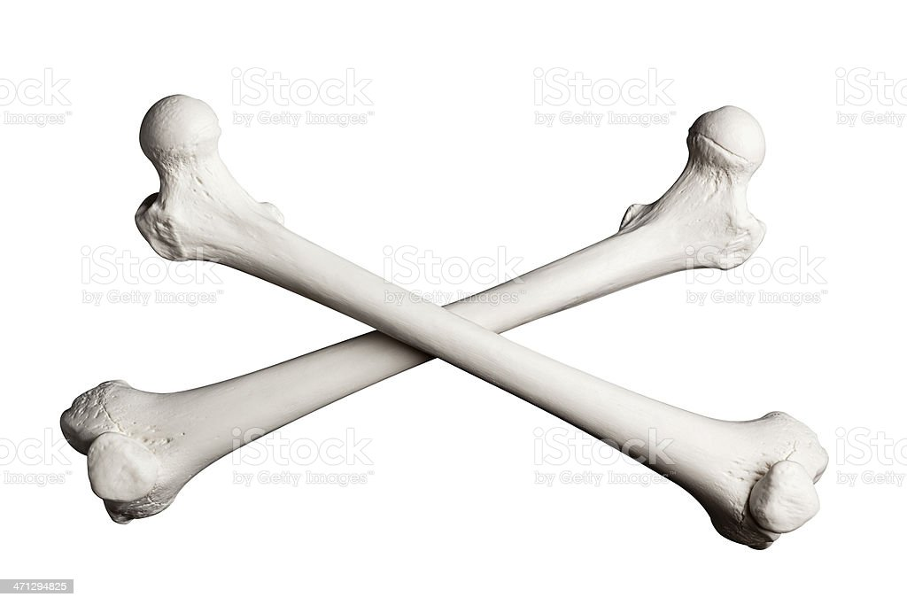Crossed Bones on a White Background. stock photo