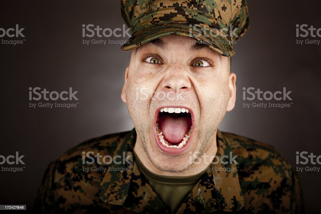 Crossed eyed Crazy Marine royalty-free stock photo