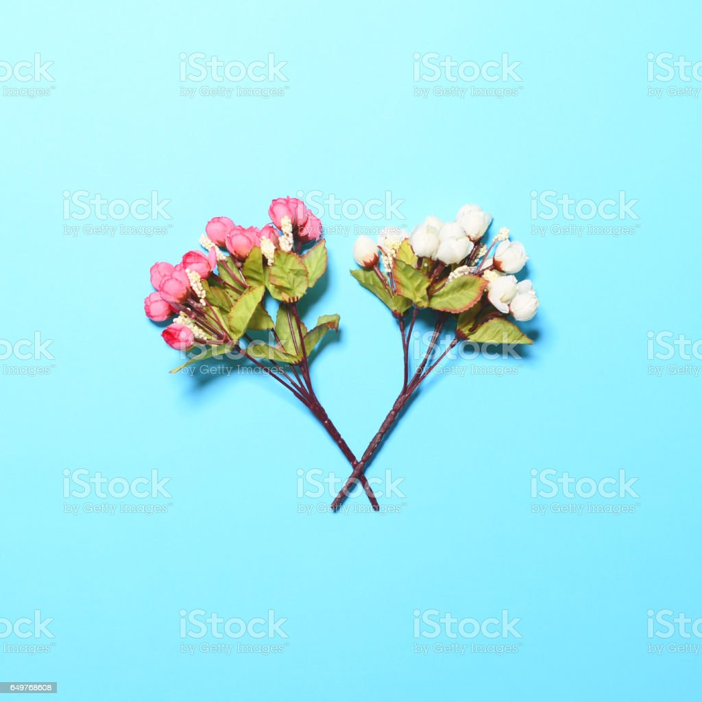 Crossed flowers on blue background - Flat lay stock photo
