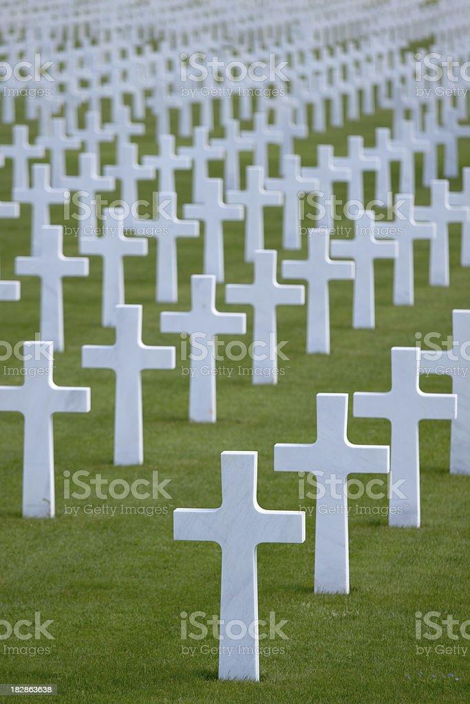 Crosses on military  cemetery stock photo