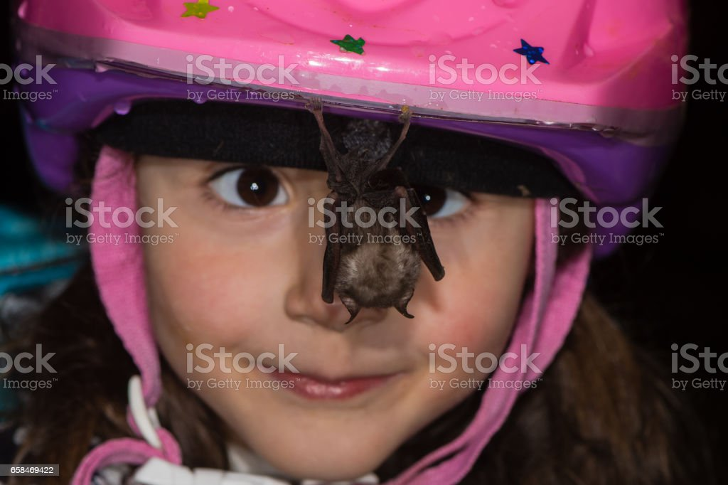 Cross-eyed child looking at bat hanging from helmet stock photo