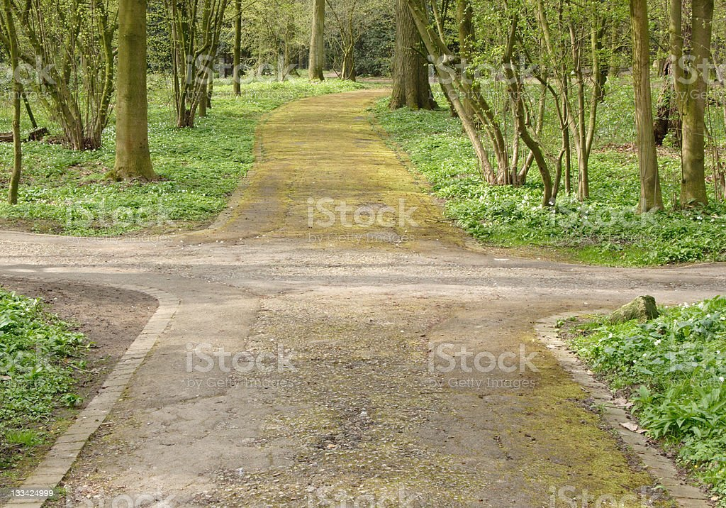 A crossing footpaths in a forest royalty-free stock photo