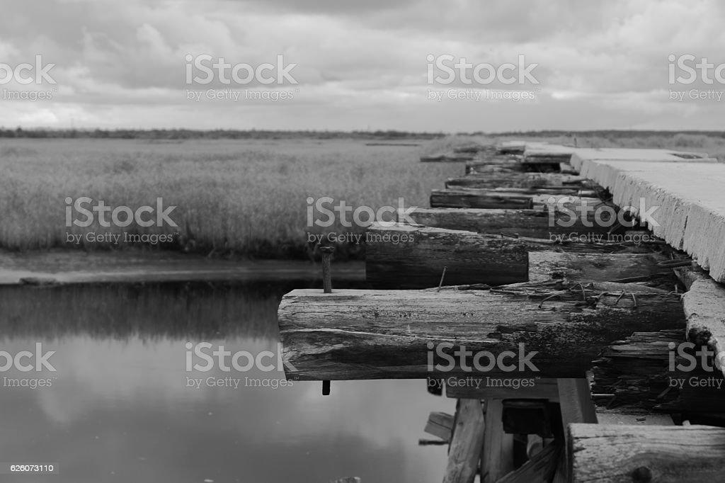 Crossing log bridge black and white background stock photo